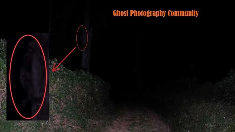 Penampakan sosok hantu di hutan pinus EDITED