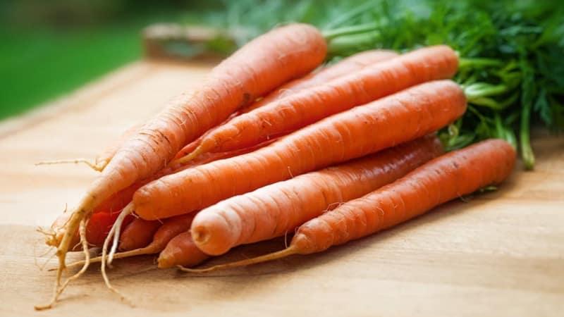 Konsumsi 10 Makanan Ini untuk Paru-paru yang Lebih Sehat info kesehatan