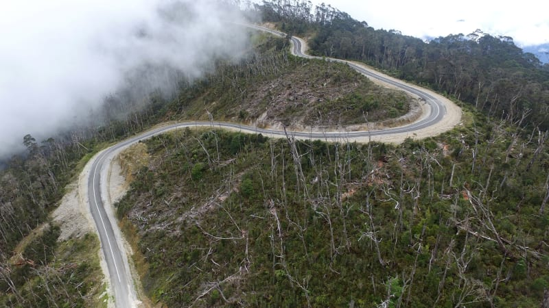 Jalan Trans Papua