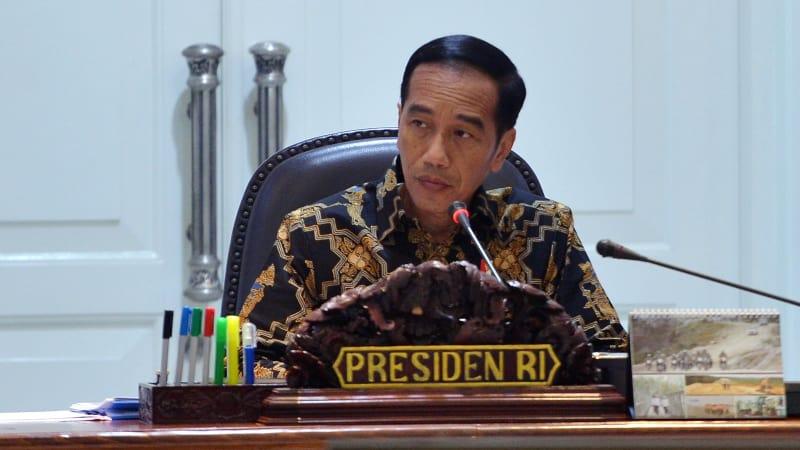 Presiden Jokowi di ratas proyek strategis nasional