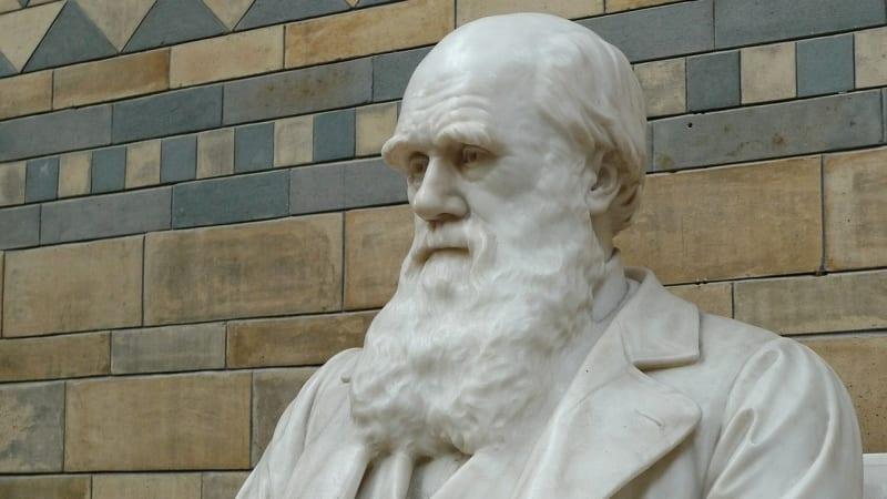 Patung Charles Darwin di Natural History Museum