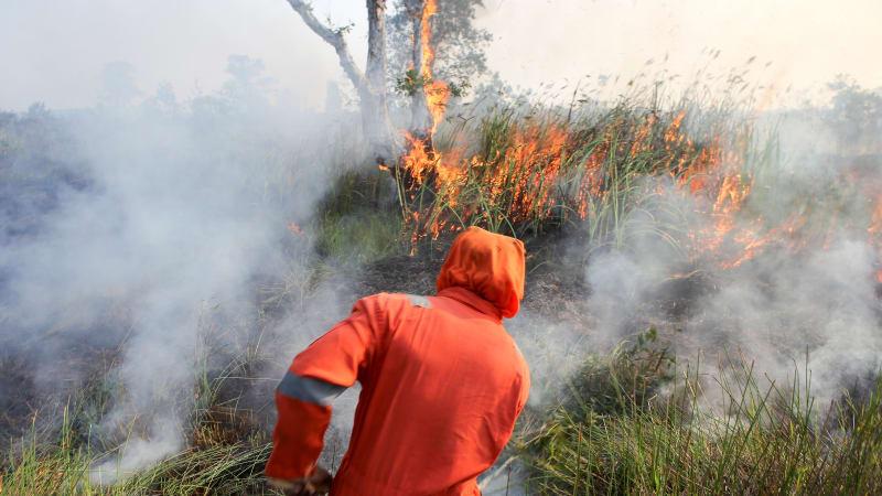 Kebakaran Hutan, Kemarau, Ogan Ilir, Sumatera Selatan
