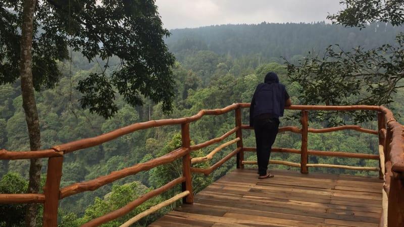 TN Gunung Gede Pangrango