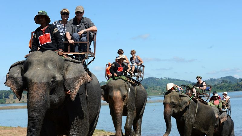 Ilustrasi menaiki gajah