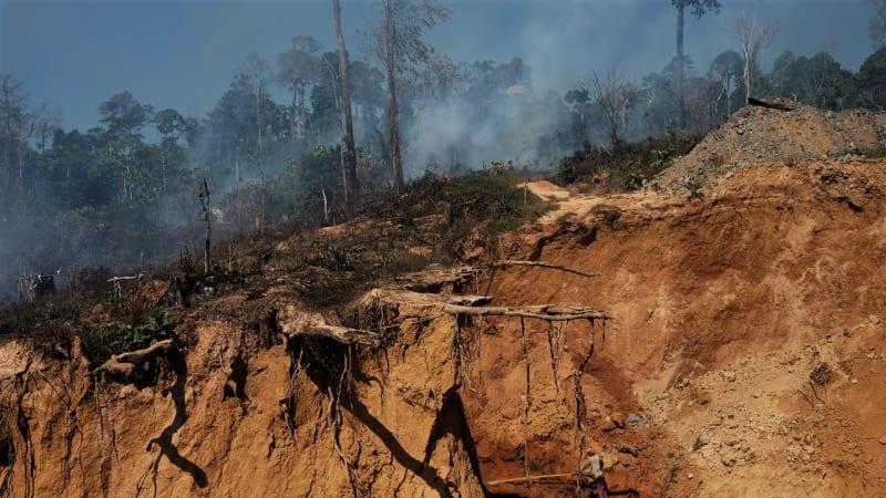 Pertambangan Ilegal di Hutan Hujan Amazon
