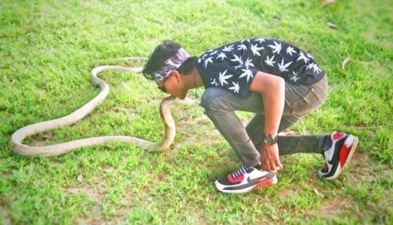Rizky Ahmad, remaja dipatok King Cobra