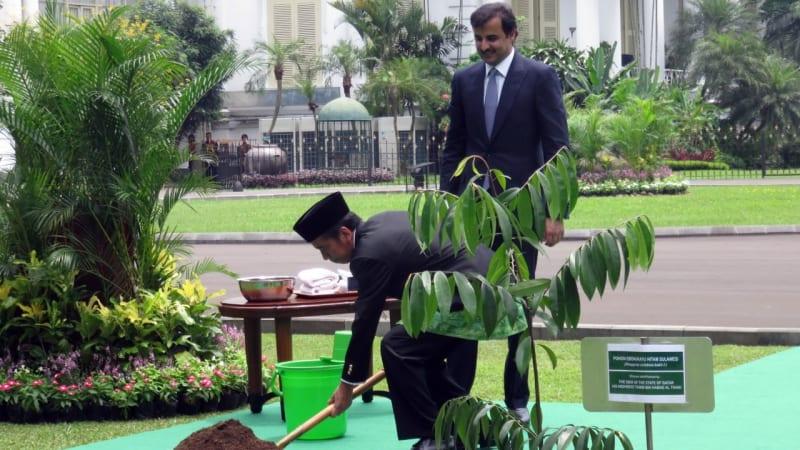 Jokowi dan Emir Qatar di Istana Bogor