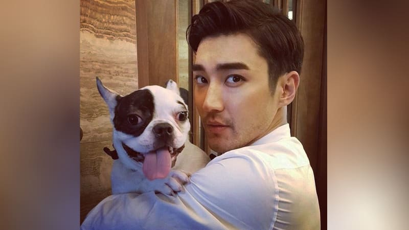 Siwon dan anjingnya, Bugsy