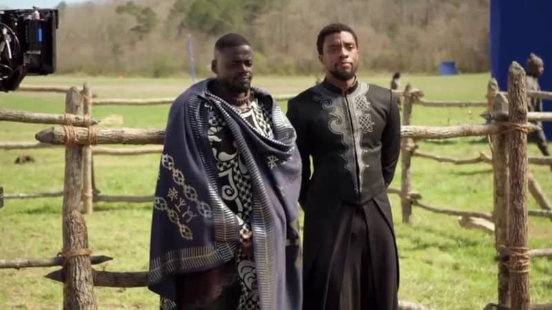 T'Challa di Film 'Black Panther'