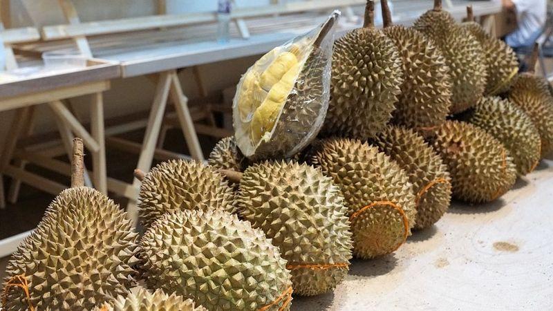 5 Fakta Menarik tentang Durian