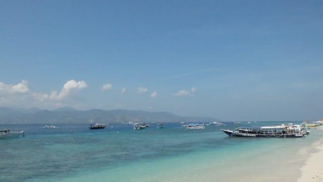 Nelayan Indonesia Mandiri dan Sejahtera, Laut dan Ikan tetap Lestari. Dapatkah Terwujud?