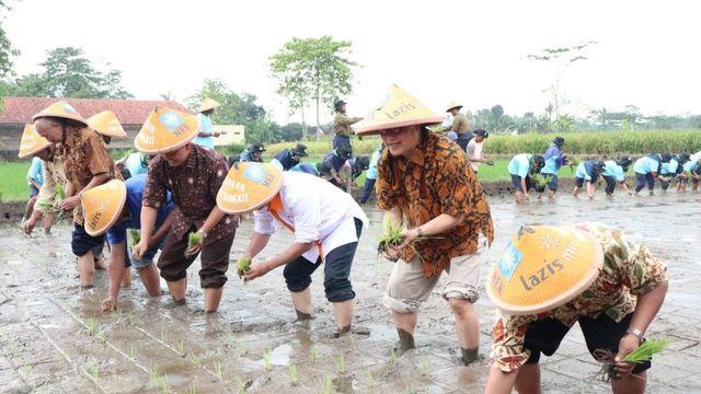 Gerakan Tani Bangkit:  Lazismu Berdayakan Petani dengan Pembiayaan Qardhul-Hasan