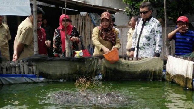 Lima Paket Layanan Pro Nelayan