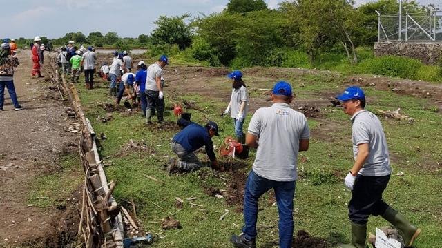 HCML Tanam 8.000 Mangrove Untuk Meningkatkan Kualitas Lingkungan Hidup