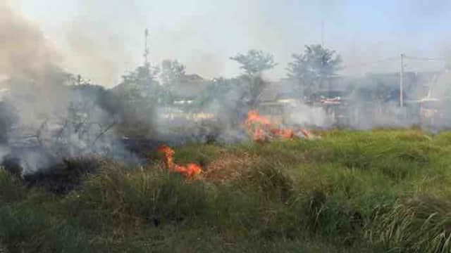 Lahan Kosong Terbakar, Pedagang Pasar Tiban Kota Tegal Panik