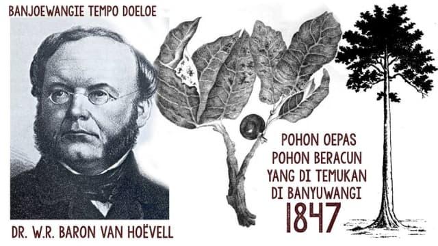 Perjalanan Dr. W.R. baron van Hoëvell di Banyuwangi, Tentang Pohon Upas Tahun 1847.