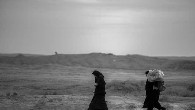 Samina Ali dan Hijab, Lost in Translation