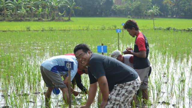 HAM untuk Petani dan Masyarakat Desa