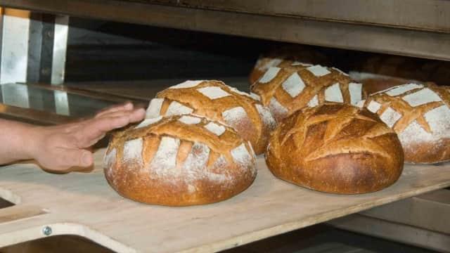 Bau Roti yang Baru Dipanggang untuk Menarik Pelanggan