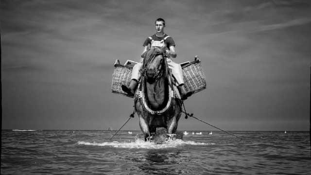 Nelayan yang Berkuda di Lautan