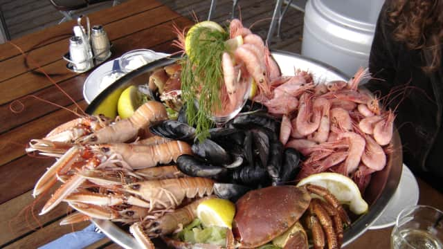 Makanan Laut Paling Mahal Sedunia