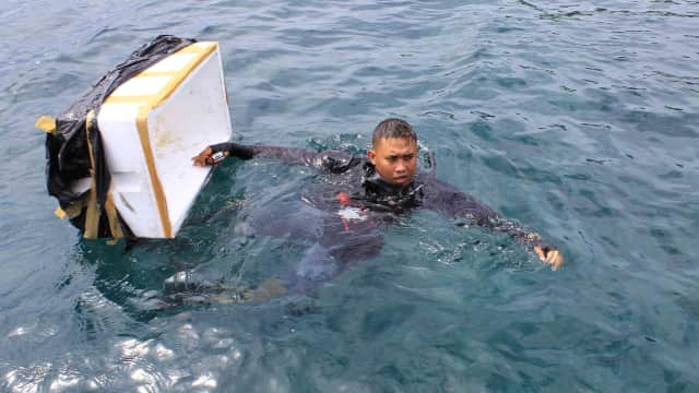 Video: Pelepesliaran  92.480 Ekor Bibit Lobster di Padang