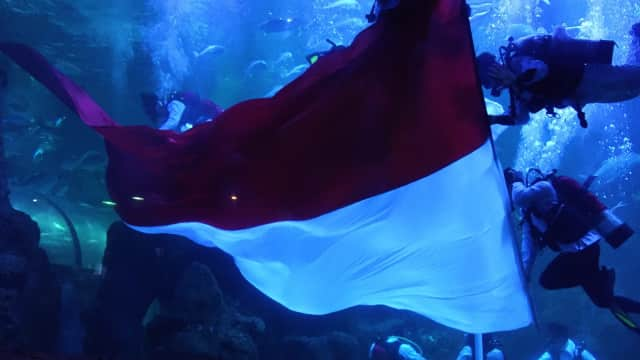 Sambut HUT RI, Seaworld Ancol Kibarkan Bendera Merah Putih di Akuarium