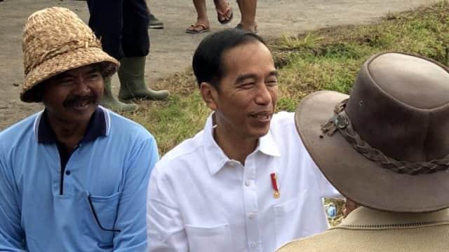 Jokowi Tinjau Program Padat Karya Pembangunan Jalan di Tabanan