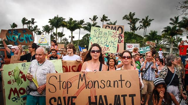 Kekalahan Monsanto di San Fransisco, Babak Baru Perlawanan Publik