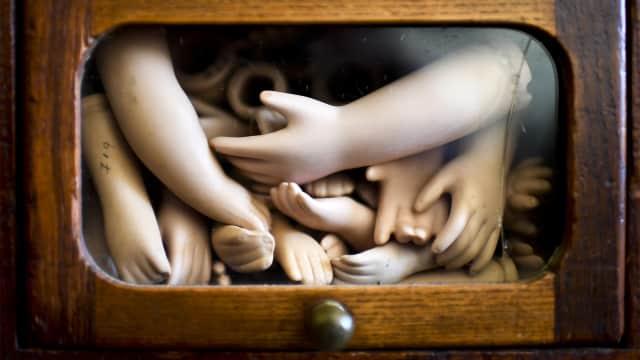 Pria di Wina Simpan Potongan Tubuh di Kulkas untuk Dimakan