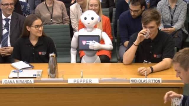 Pepper, Robot Pertama yang Jadi Saksi di Sidang Parlemen