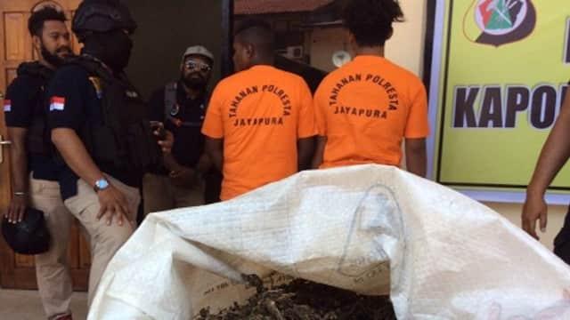 Pemakai Narkoba di Papua Tembus 1,7%