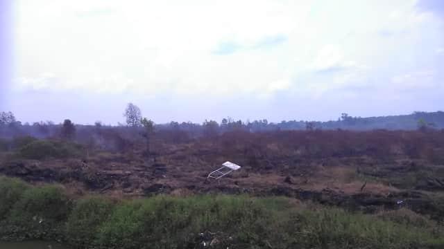 5 Anggota DPR RI Gagal Rapat di Banjarmasin karena Kabut Asap