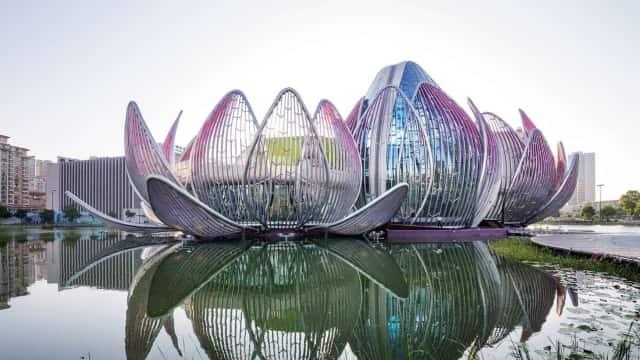 Daun Lotus dan Bagaimana Penghargaan Sains Jadi Jantung Kemajuan China
