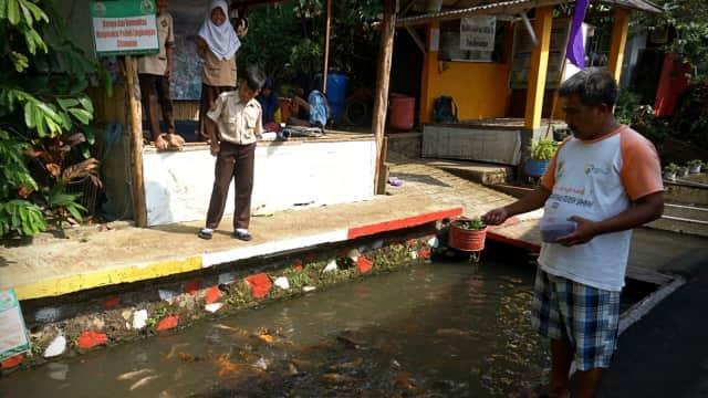 Kegigihan Warga Bogor Ubah Selokan Kumuh Jadi Kolam Ikan