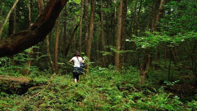 Hutan Larangan dan Perannya dalam Sediakan Air Bersih bagi Masyarakat