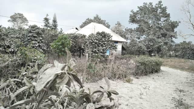 Kisah Mencekam saat Sinabung Erupsi: Langit Gelap dan Abu Sebetis Kaki