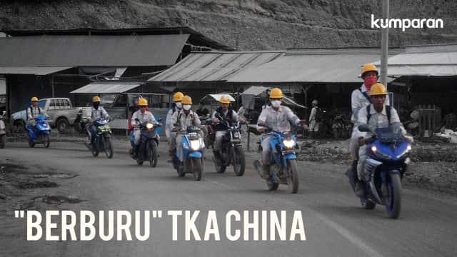 Beda Rasa Buruh Lokal dan Buruh Impor China