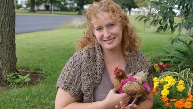 Ada yang Jual Popok untuk Ayam di AS...dan Laris