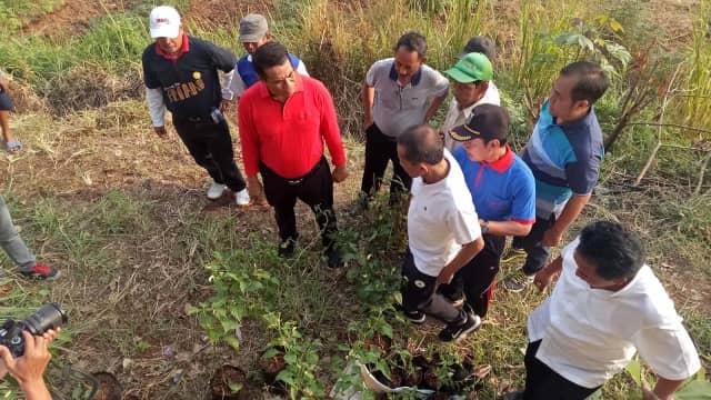Mentan Dorong Lahan Tidur di Banjir Kanal Timur Ditanami Sayur-sayuran
