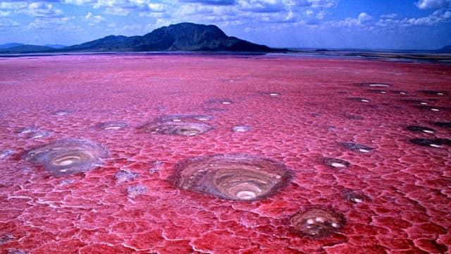 Ajaibnya Lake Natron, Danau 'Mumi' di Afrika