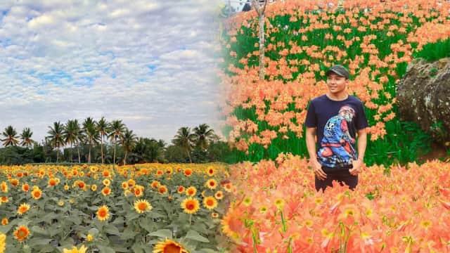 5 Lahan Biasa yang 'Disulap' Warga Jadi Kebun Bunga Cantik