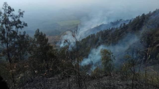Memasuki Hari Ketiga Kebakaran di Gunung Arjuno Belum Juga Padam