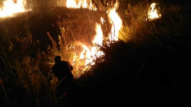 Hutan Arjuno Kembali Terbakar