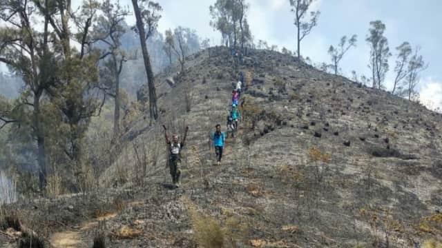 Kebakaran Hutan di Gunung Arjuno Diduga Disengaja