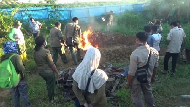 292 Bangkai Buaya yang Dibantai Warga di Papua Dibakar