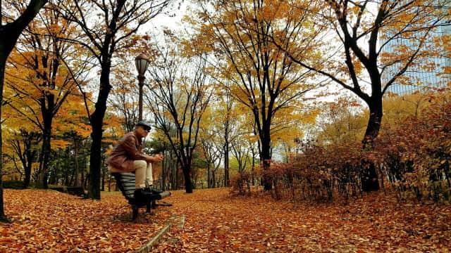 Musim Dingin di Korea Selatan Telah Tiba, Siapkan Baju Tebal