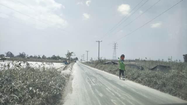 Lebih Dari 30 Ribu Hektar Lahan Terdampak Erupsi Sinabung