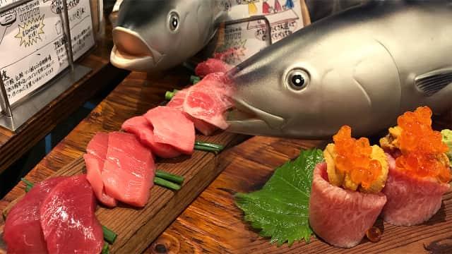 Maguro Mart, Restoran Unik yang Hanya Sajikan Menu Ikan Tuna