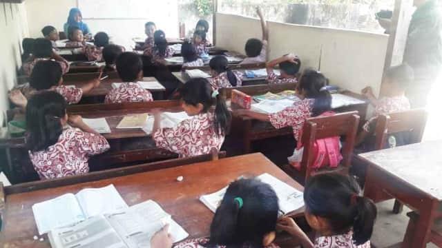Kekurangan Kelas, Murid SD di Tulungagung Belajar Dekat Kandang Sapi